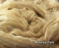 Baby Camel/Tussah Silk Tops