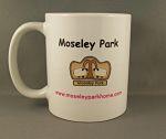 Moseley Park Mug